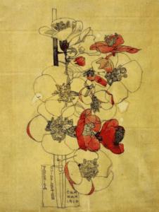 charlesmackintosh pencil drawing red japonica 1910 preen lkbennett